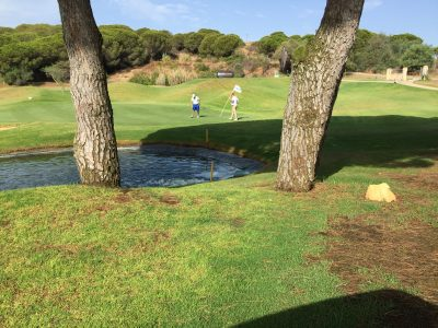 doubletree_hilton_golf_cabopino_green_hole_sillero