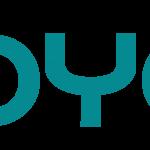 INDYCO,  el metodo de evaluación de Ecosistemas Digitales